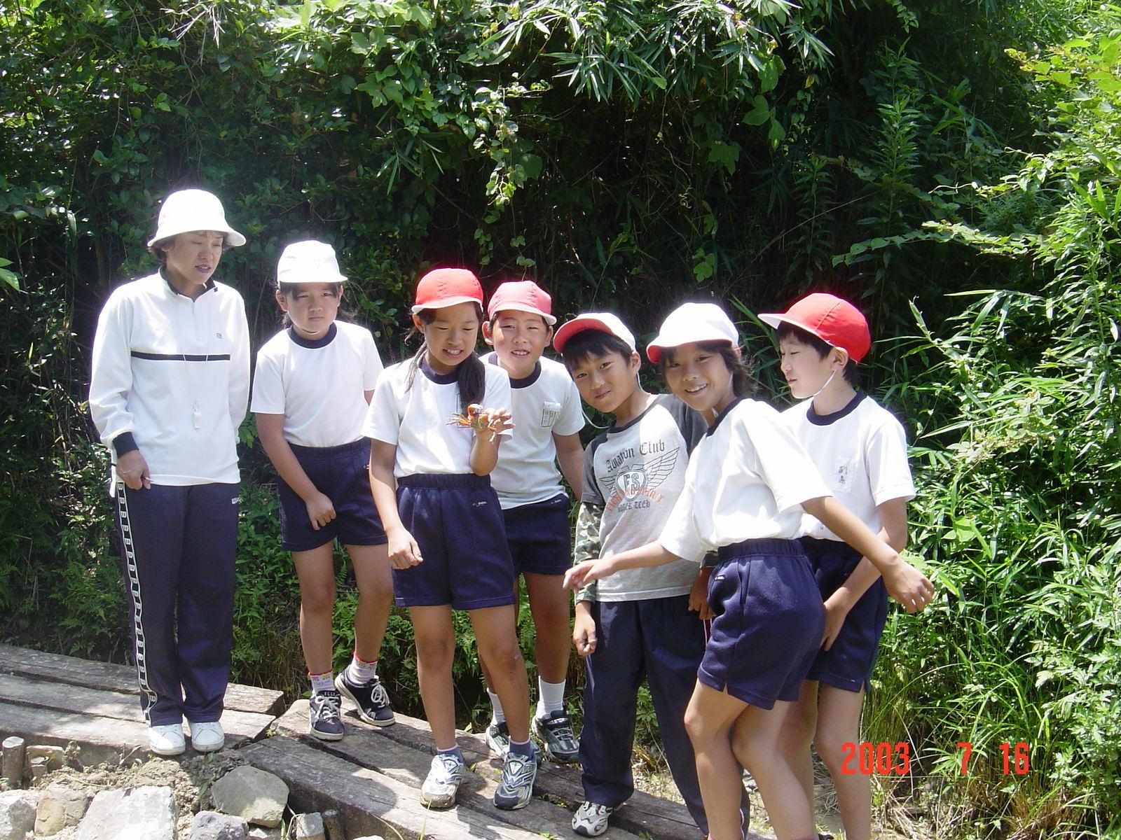 うみべの森の歴史⑭「2003年7月の活動」_c0108460_12325987.jpg