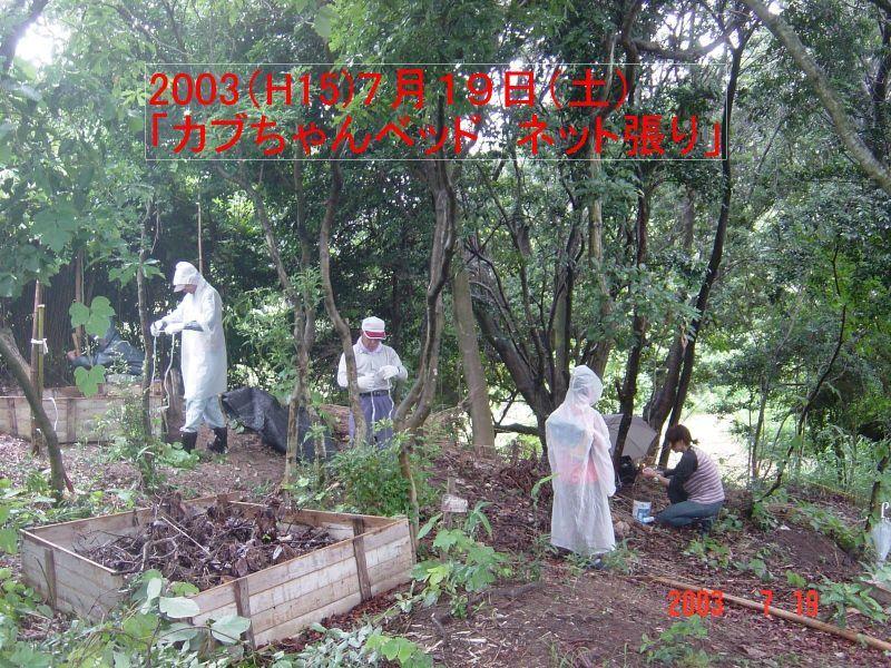 うみべの森の歴史⑭「2003年7月の活動」_c0108460_12401458.jpg