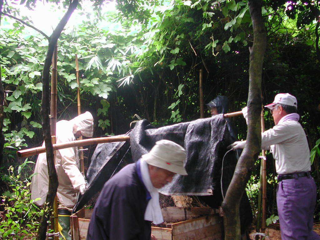 うみべの森の歴史⑭「2003年7月の活動」_c0108460_12404835.jpg