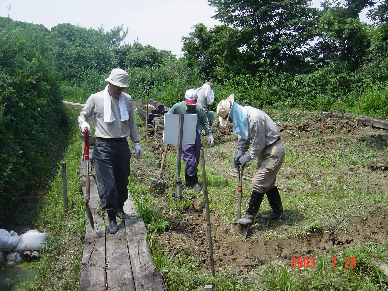 うみべの森の歴史⑭「2003年7月の活動」_c0108460_12422634.jpg