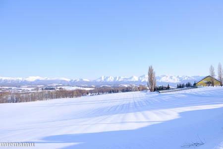 ケンとメリーの木と雪景色~1月の美瑛_d0340565_19535847.jpg