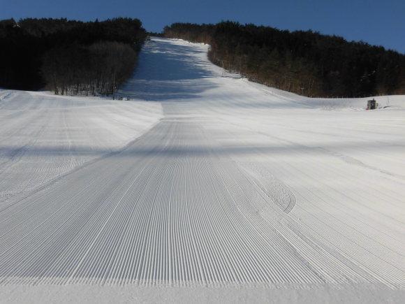 令和3年2月 27日(土)天気/晴 気温/-11℃ 風/無 積雪/60㎝ 滑走可能_e0306207_08154778.jpg