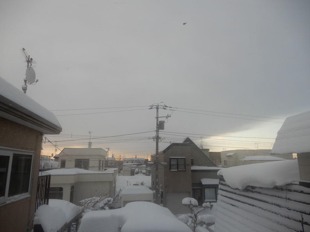 昨日の昼から降った雪は30センチほど積りました_c0025115_20491109.jpg