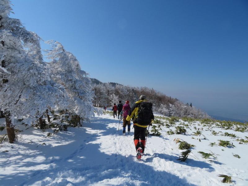 樹氷林を行く  南沢山 (1,564M)    横川山山頂目指す_d0170615_19131178.jpg
