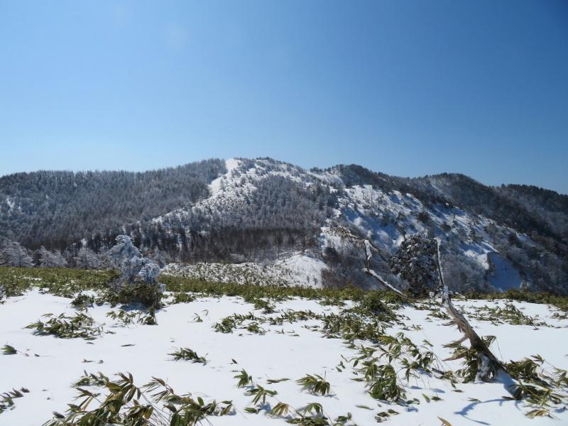 樹氷林を行く  南沢山 (1,564M)    横川山山頂目指す_d0170615_19133816.jpg