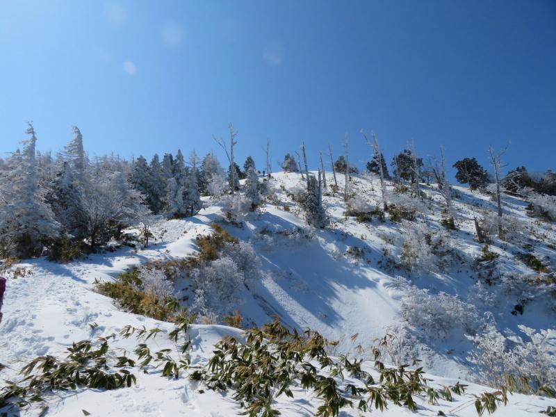 樹氷林を行く  南沢山 (1,564M)    横川山山頂目指す_d0170615_19142929.jpg