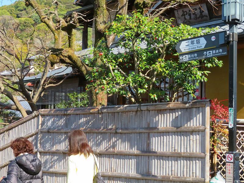 京都ぶらり町歩き(東山その②)20210227_e0237645_22520734.jpg