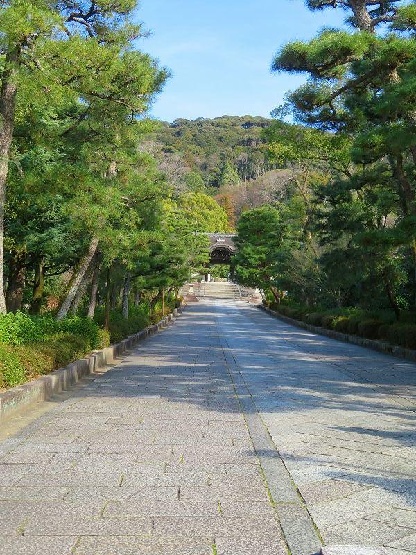 京都ぶらり町歩き(東山その④)20210227_e0237645_23151006.jpg