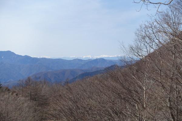 晴天の鷹の巣山。_a0138134_14443726.jpeg