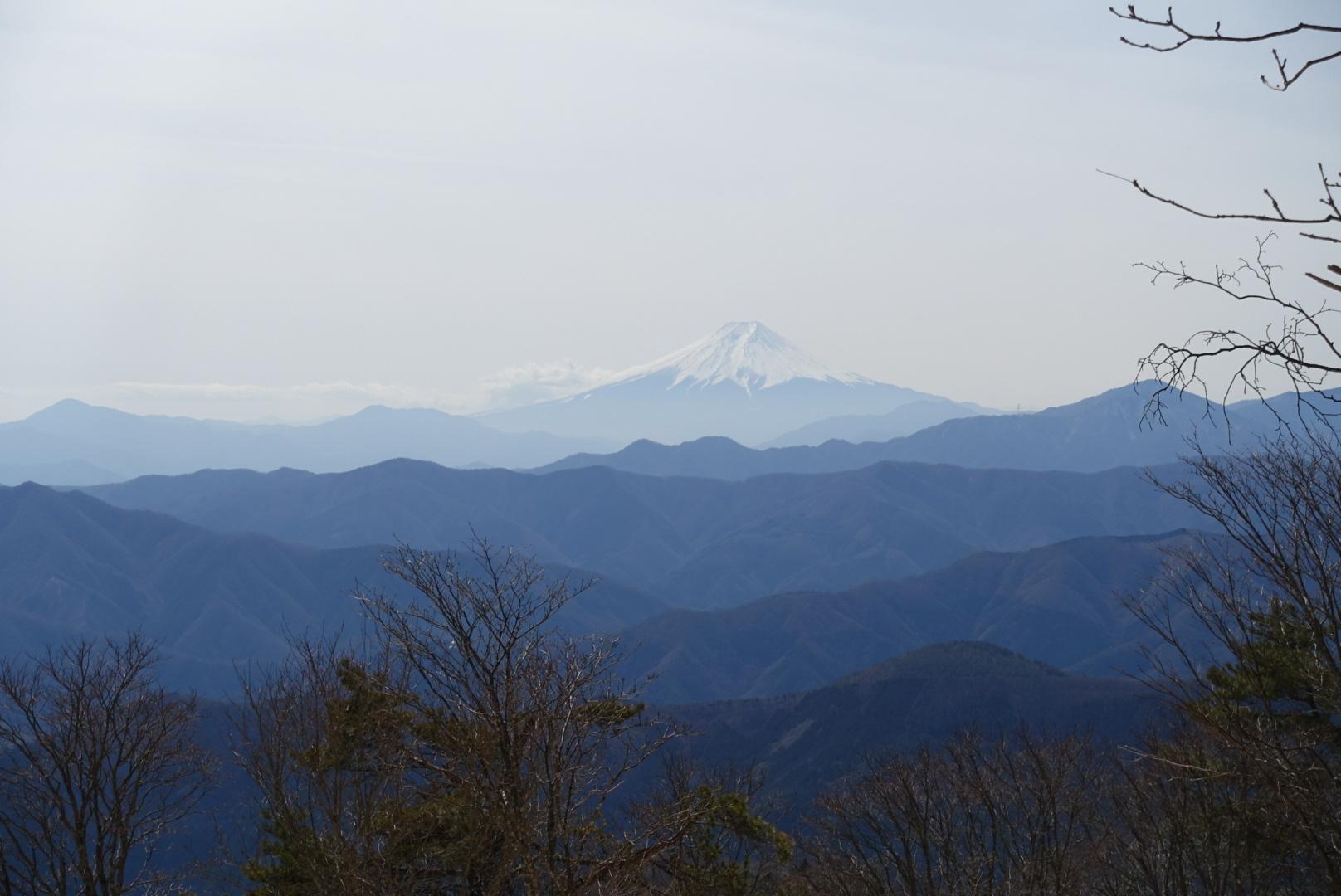 晴天の鷹の巣山。_a0138134_14480390.jpeg