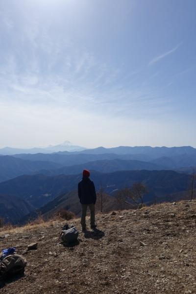 晴天の鷹の巣山。_a0138134_14565389.jpeg