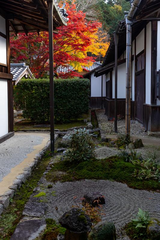 2020紅葉きらめく京都 秋深まる曼殊院_f0155048_23300787.jpg