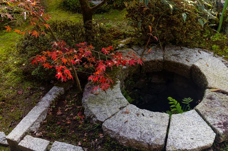 2020紅葉きらめく京都 秋深まる曼殊院_f0155048_23301351.jpg