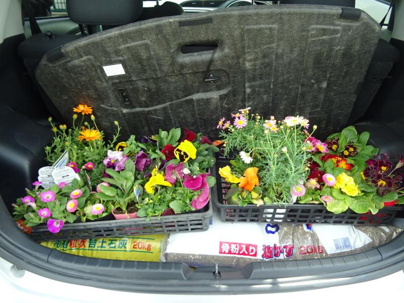 コーナンへ園芸資材を買いに行く_c0108460_17522332.jpg