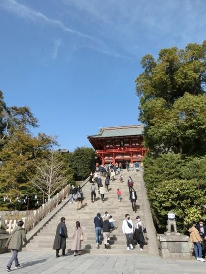 2/23、鎌倉ハイキング:その3(鶴岡八幡宮)_e0045768_21533839.jpg
