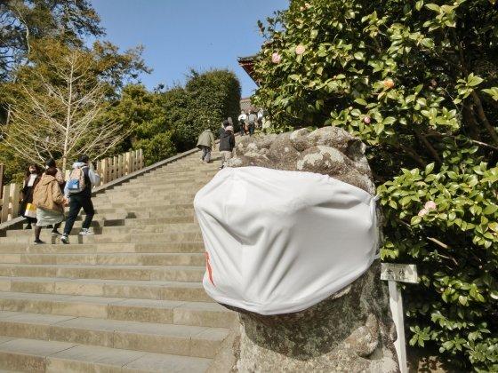 2/23、鎌倉ハイキング:その3(鶴岡八幡宮)_e0045768_21541819.jpg