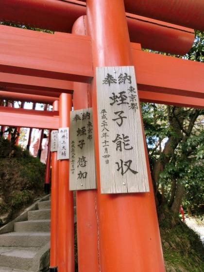 2/23、鎌倉ハイキング:その3(鶴岡八幡宮)_e0045768_21552079.jpg