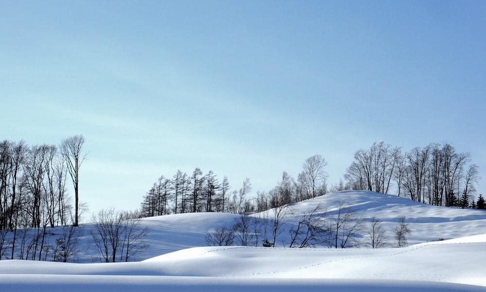 2月末 栗山町_b0068572_20534240.jpg