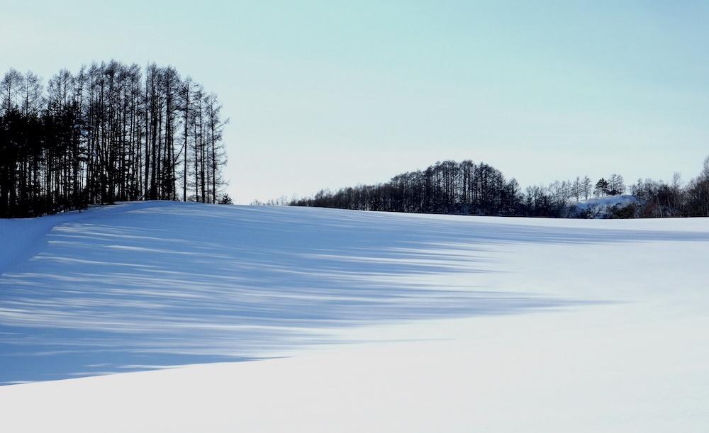 2月末 栗山町_b0068572_20545330.jpg