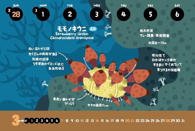 モモノキウニ_f0292806_03105768.jpg