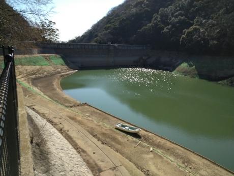 再度公園~洞川梅林~七三峠~諏訪神社_c0218841_11274037.jpg