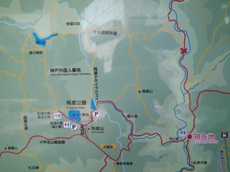 再度公園~洞川梅林~七三峠~諏訪神社_c0218841_11293805.jpg