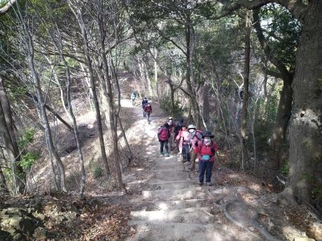 再度公園~洞川梅林~七三峠~諏訪神社_c0218841_11342967.jpg
