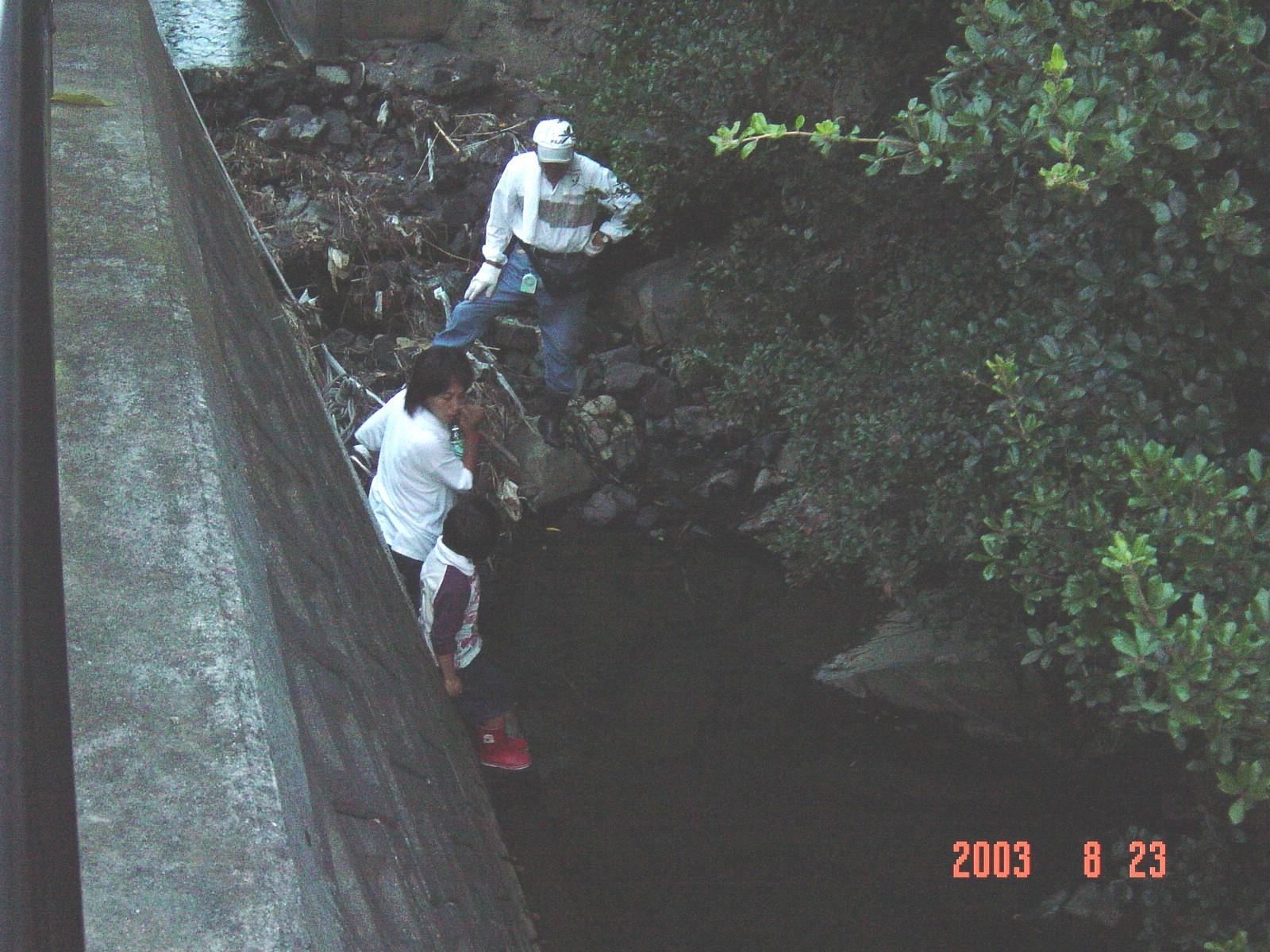 うみべの森の歴史⑮「2003年8月の活動」_c0108460_13512154.jpg