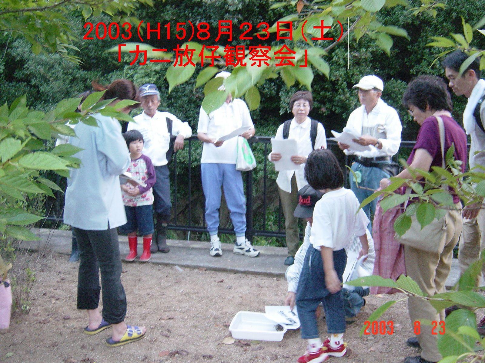 うみべの森の歴史⑮「2003年8月の活動」_c0108460_13512218.jpg
