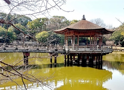 奈良公園の梅林は梅と鹿が楽しめます♪_b0194861_18452420.jpg