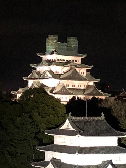 名古屋城しゃちほこ降臨_a0113003_11461736.jpg