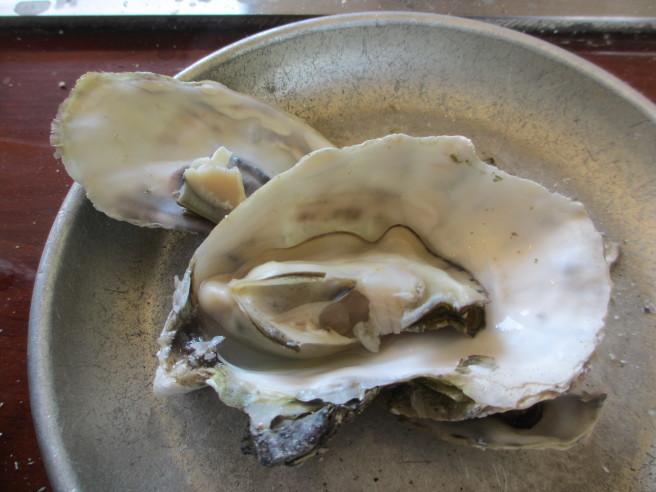 のと牡蠣食べてきた_f0364035_11293629.jpg