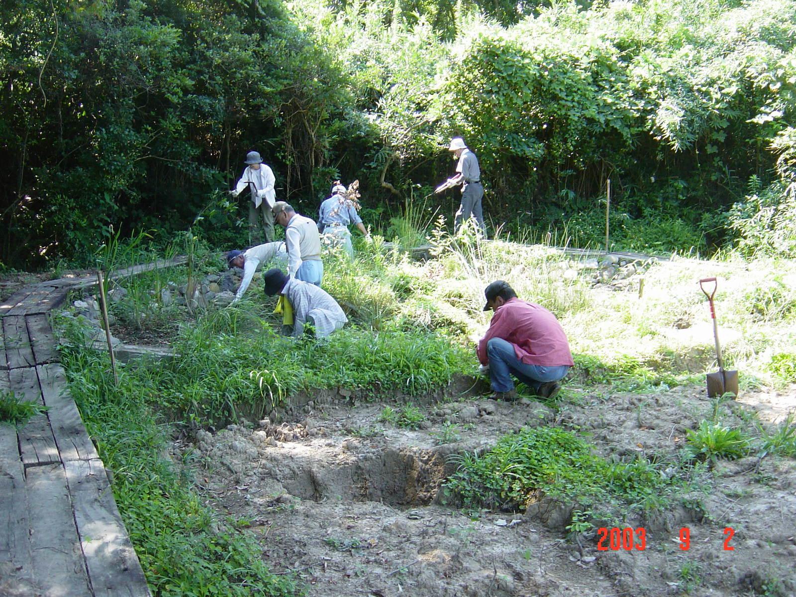 うみべの森の歴史⑮「2003年9月の活動」_c0108460_11261056.jpg