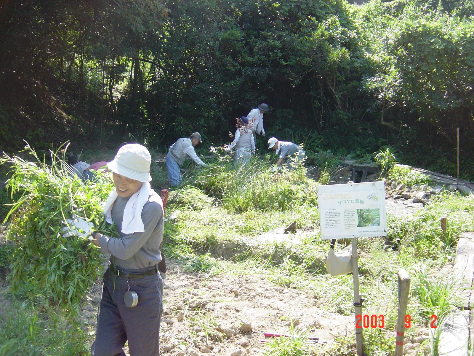 うみべの森の歴史⑮「2003年9月の活動」_c0108460_11261187.jpg