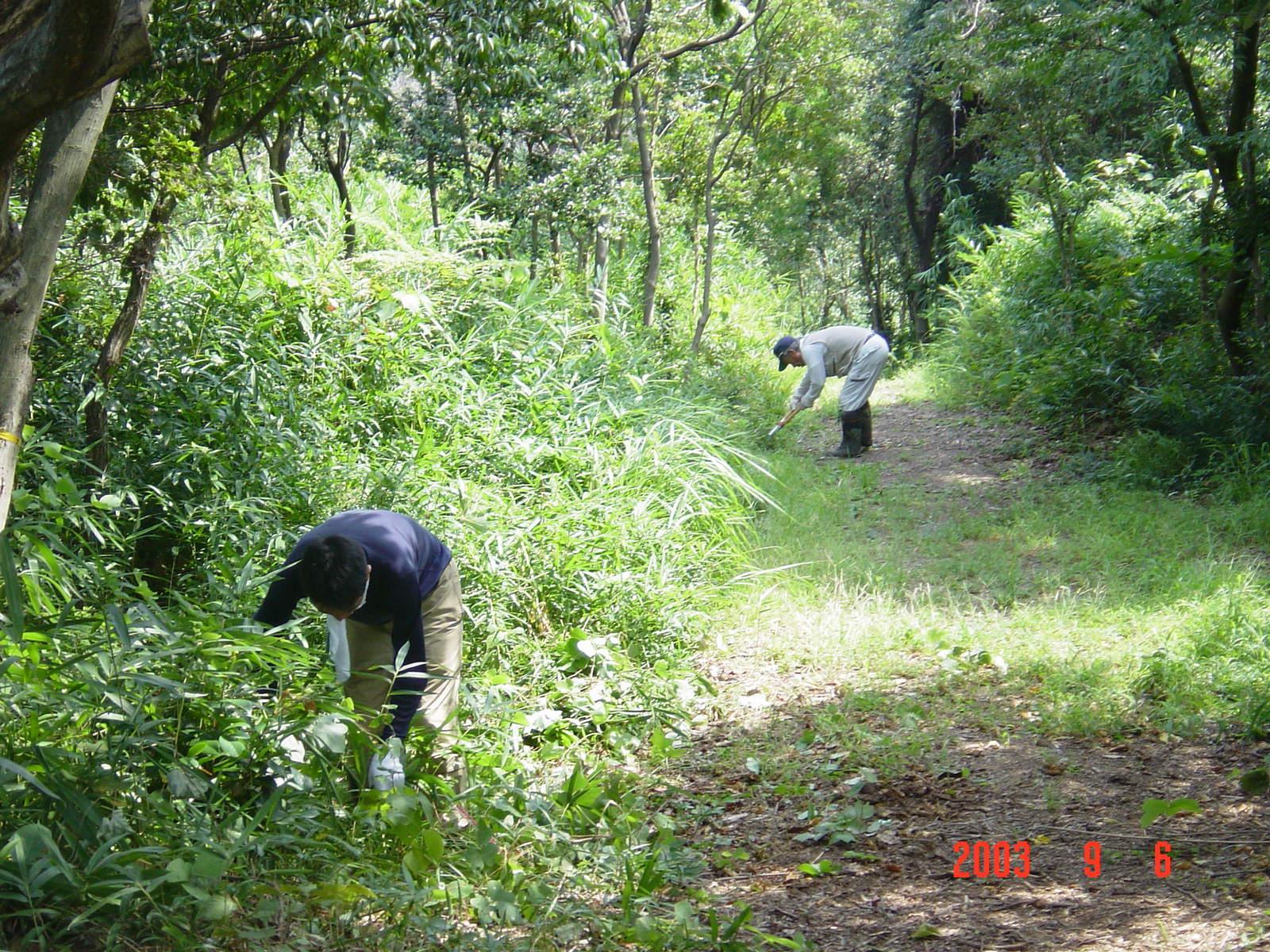 うみべの森の歴史⑮「2003年9月の活動」_c0108460_11272752.jpg