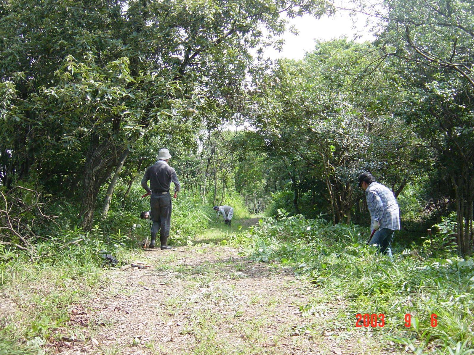 うみべの森の歴史⑮「2003年9月の活動」_c0108460_11272805.jpg