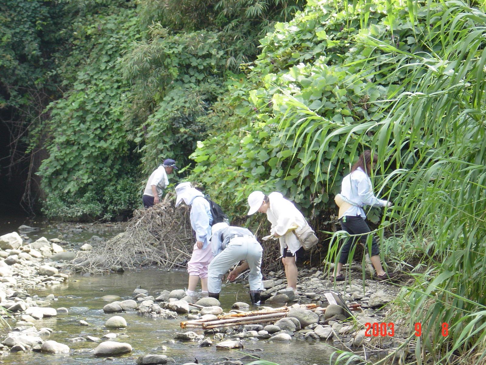 うみべの森の歴史⑮「2003年9月の活動」_c0108460_11570039.jpg