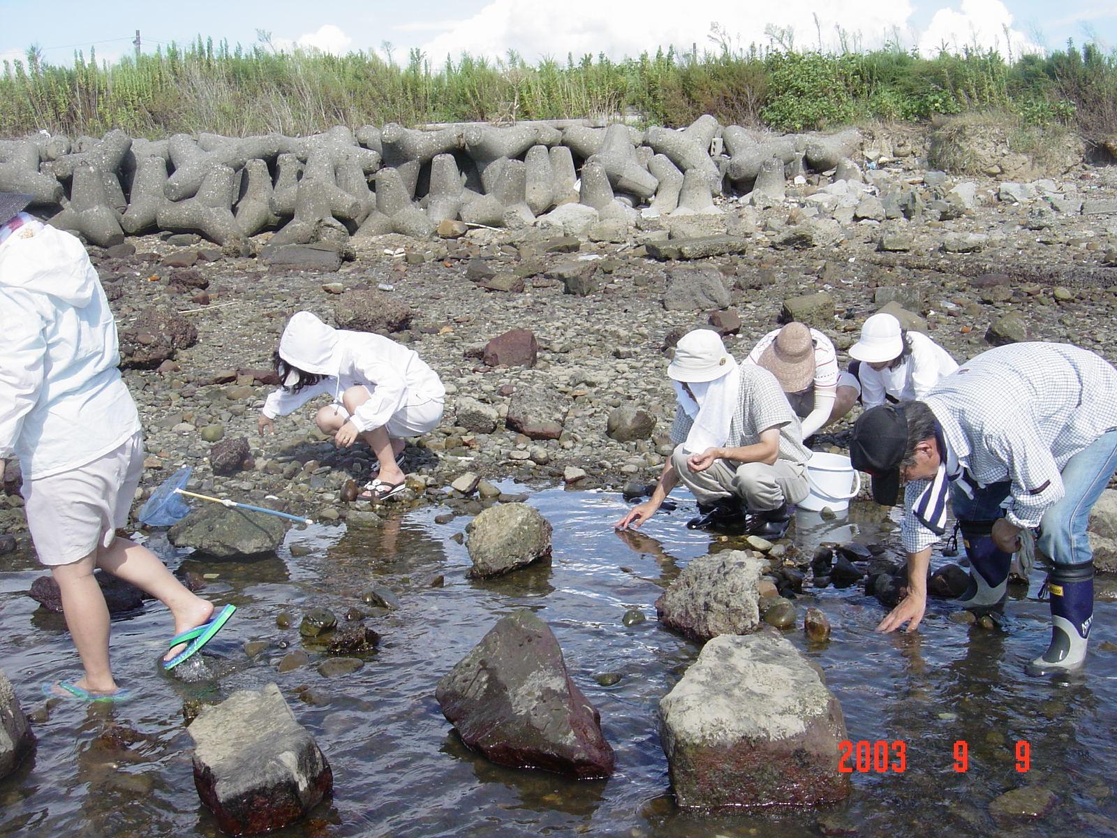 うみべの森の歴史⑮「2003年9月の活動」_c0108460_12063666.jpg