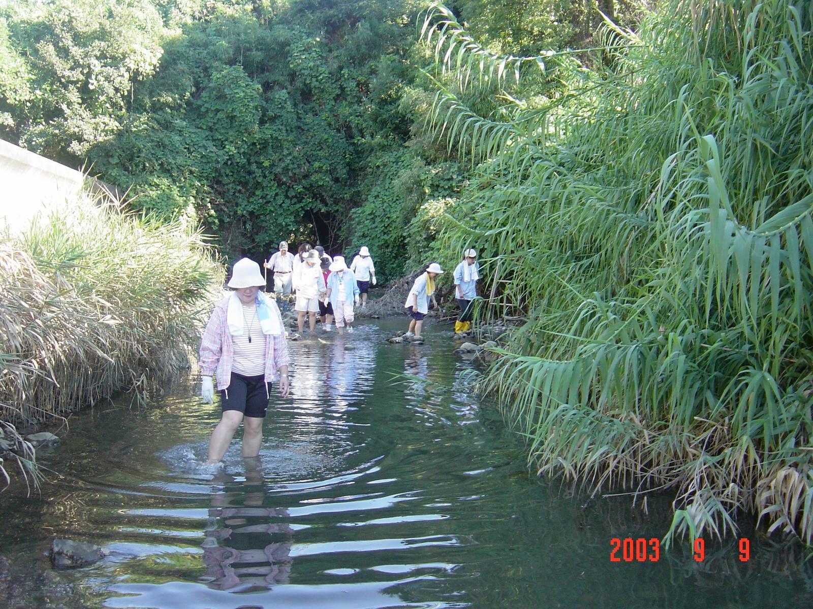 うみべの森の歴史⑮「2003年9月の活動」_c0108460_12074355.jpg