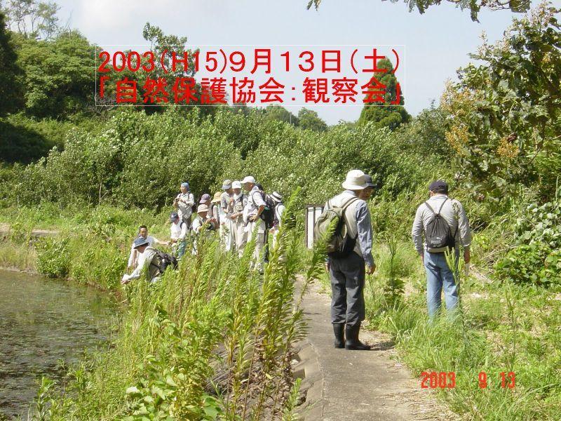 うみべの森の歴史⑮「2003年9月の活動」_c0108460_12111540.jpg