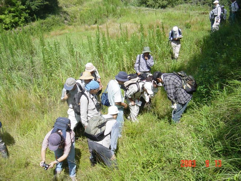 うみべの森の歴史⑮「2003年9月の活動」_c0108460_12111558.jpg