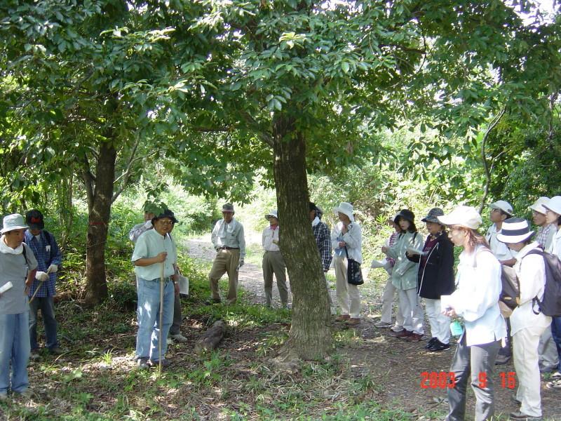 うみべの森の歴史⑮「2003年9月の活動」_c0108460_12182747.jpg