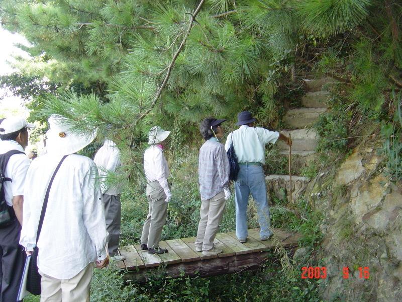 うみべの森の歴史⑮「2003年9月の活動」_c0108460_12182805.jpg