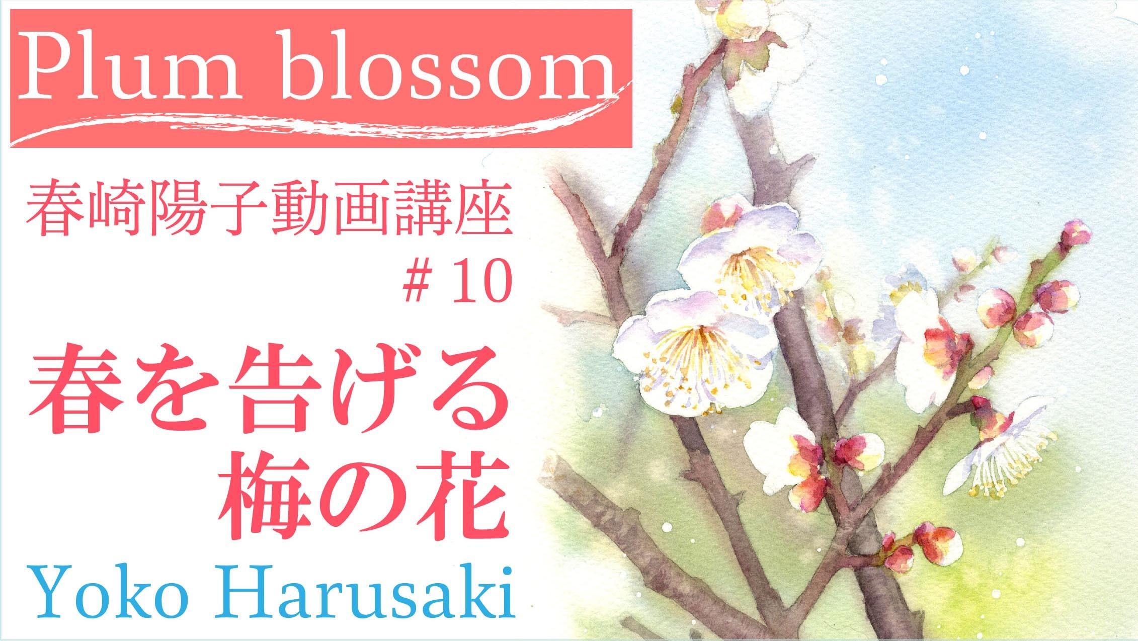 春崎陽子動画講座#10 「春を告げる梅の花」_f0176370_15540854.jpg