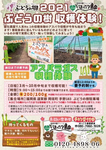 アスパラガス収穫体験開始★_f0224320_13381638.jpg