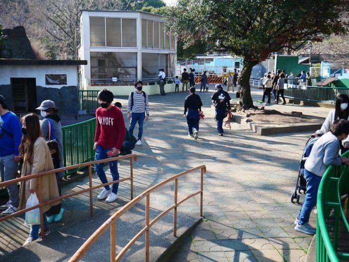 お城の動物園  2021-03-05 00:00_b0093754_22431555.jpg