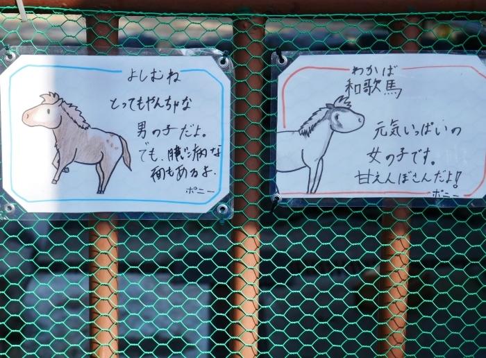お城の動物園  2021-03-05 00:00_b0093754_22435935.jpg