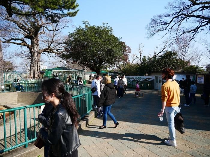 お城の動物園  2021-03-05 00:00_b0093754_22442077.jpg