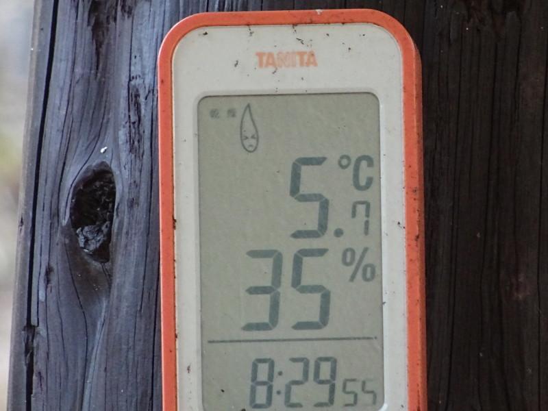 間伐と原木杭作り・・・うみべの森定例活動日_c0108460_15113755.jpg