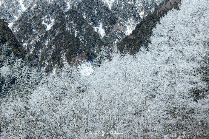 山はまだまだ冬景色_f0361287_16531955.jpg
